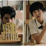 長庚研究:台灣近8成肝癌與馬兜鈴酸有關