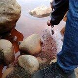 酷航歡慶台灣開航五週年單程含稅1,555起,粉絲團活動一人可得五組雙人機票