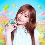 民進黨竹市議員提名12人 新人占一半