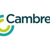 中國若犯台 前國防部副部長林中斌:台灣撐不過72小時